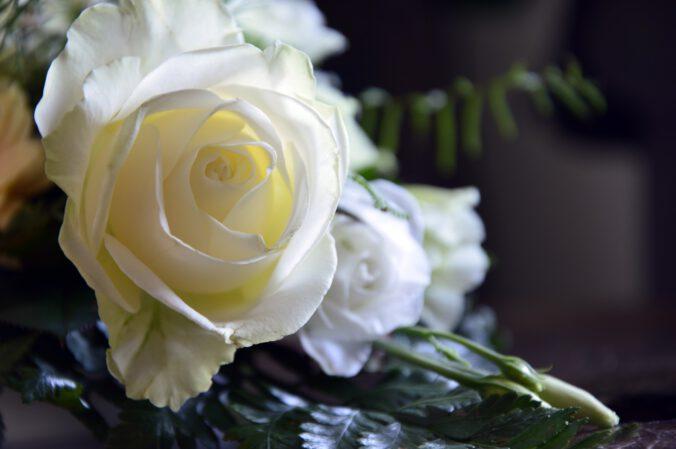 Grabpflegekosten Pflichtteil